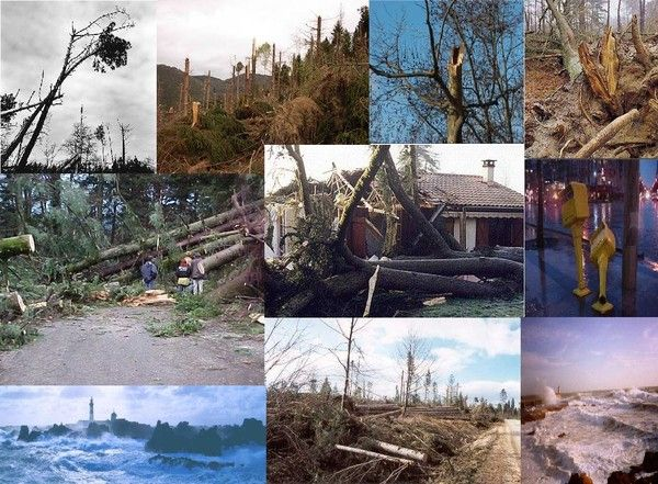 Tempête 1999